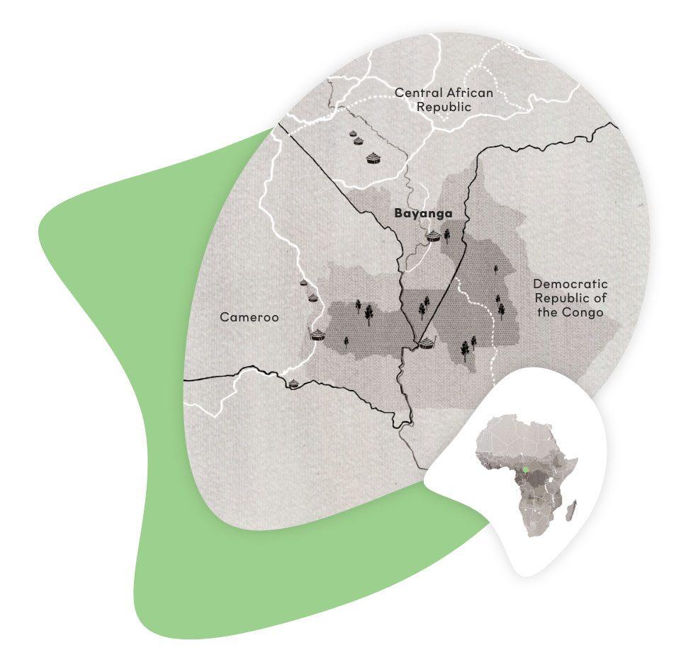 Übersichtskarte des Dzanga-Sangha Schutzgebiets