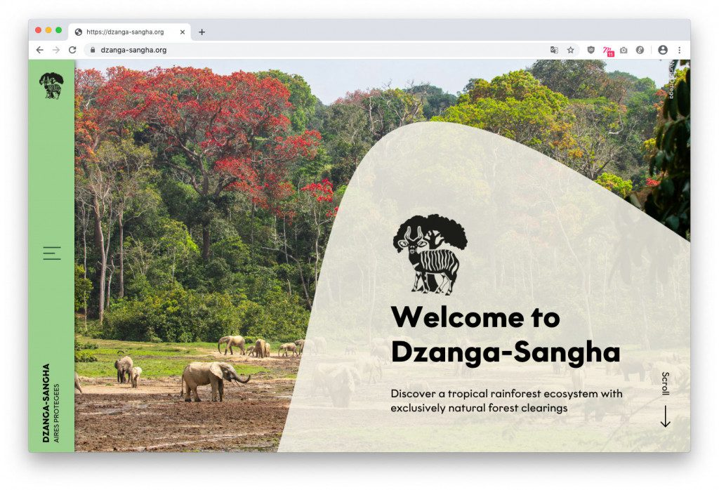Startseite Wordpress-Website für das Dzanga-Sangha Schutzgebiet