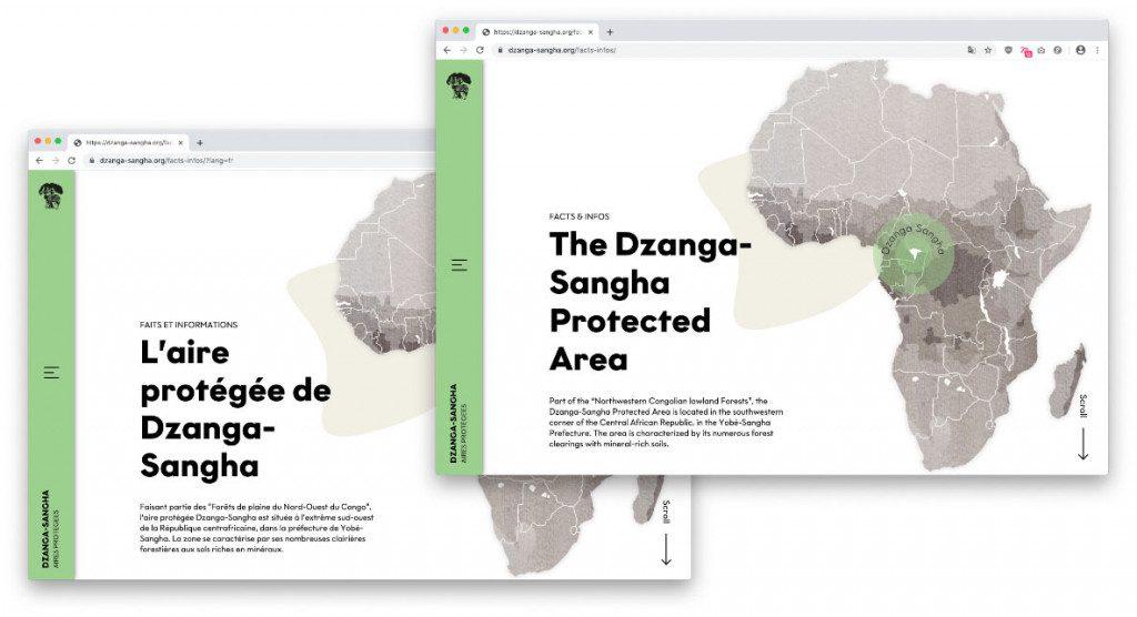 Mehrsprachige Wordpress-Website für das Dzanga-Sangha Schutzgebiet