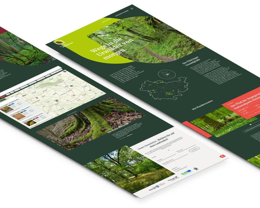 Seiten der Website Thüringer Urwaldpfade